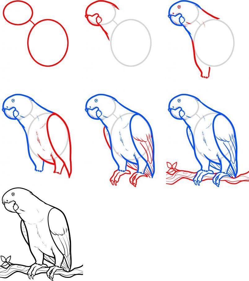 Basit Hayvan Çizimleri