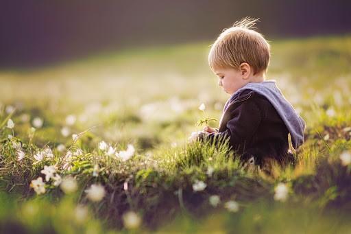 Çocuğun Mizacının Keşfedilmesi